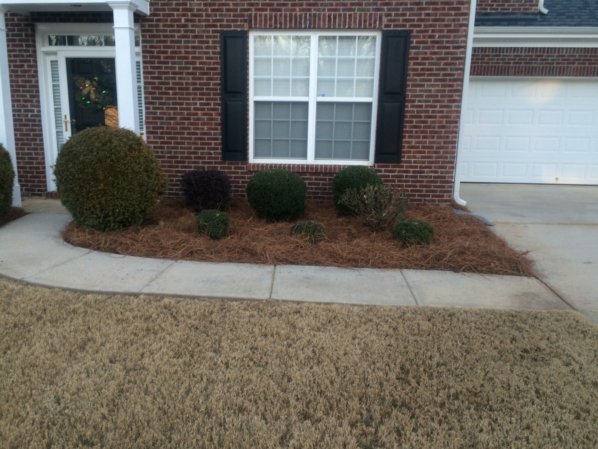 Before - shrub bed