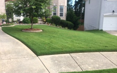 The grass professionals leading landscape and lawn for Basic garden maintenance
